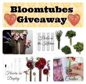 Bloomtubes-Giveaway 2